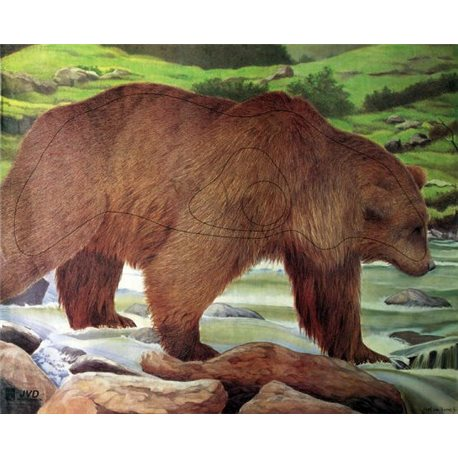 Terč medvěd