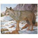 Terč vlk