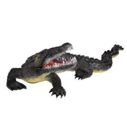 Aligátor - velký